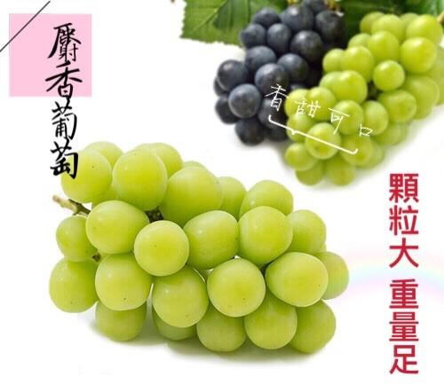 【立三】日本頂級麝香晴王葡萄(1串/盒)