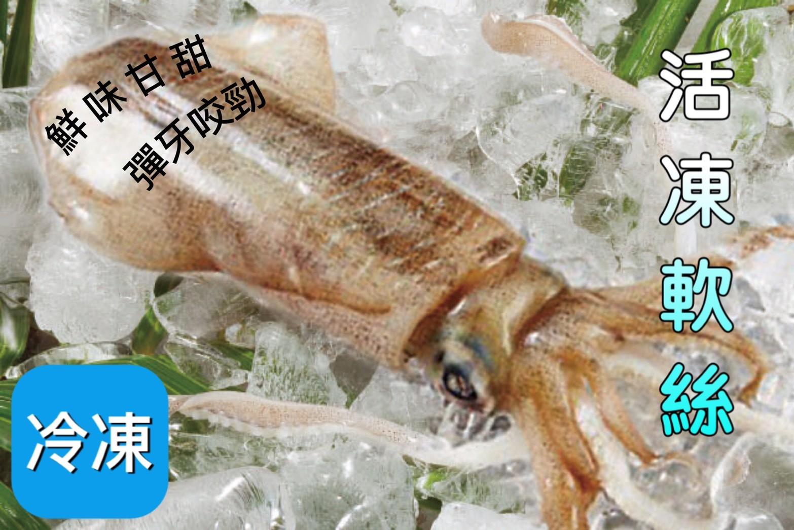 【立三】極鮮甜活凍軟絲( 350g ± 50g尾)