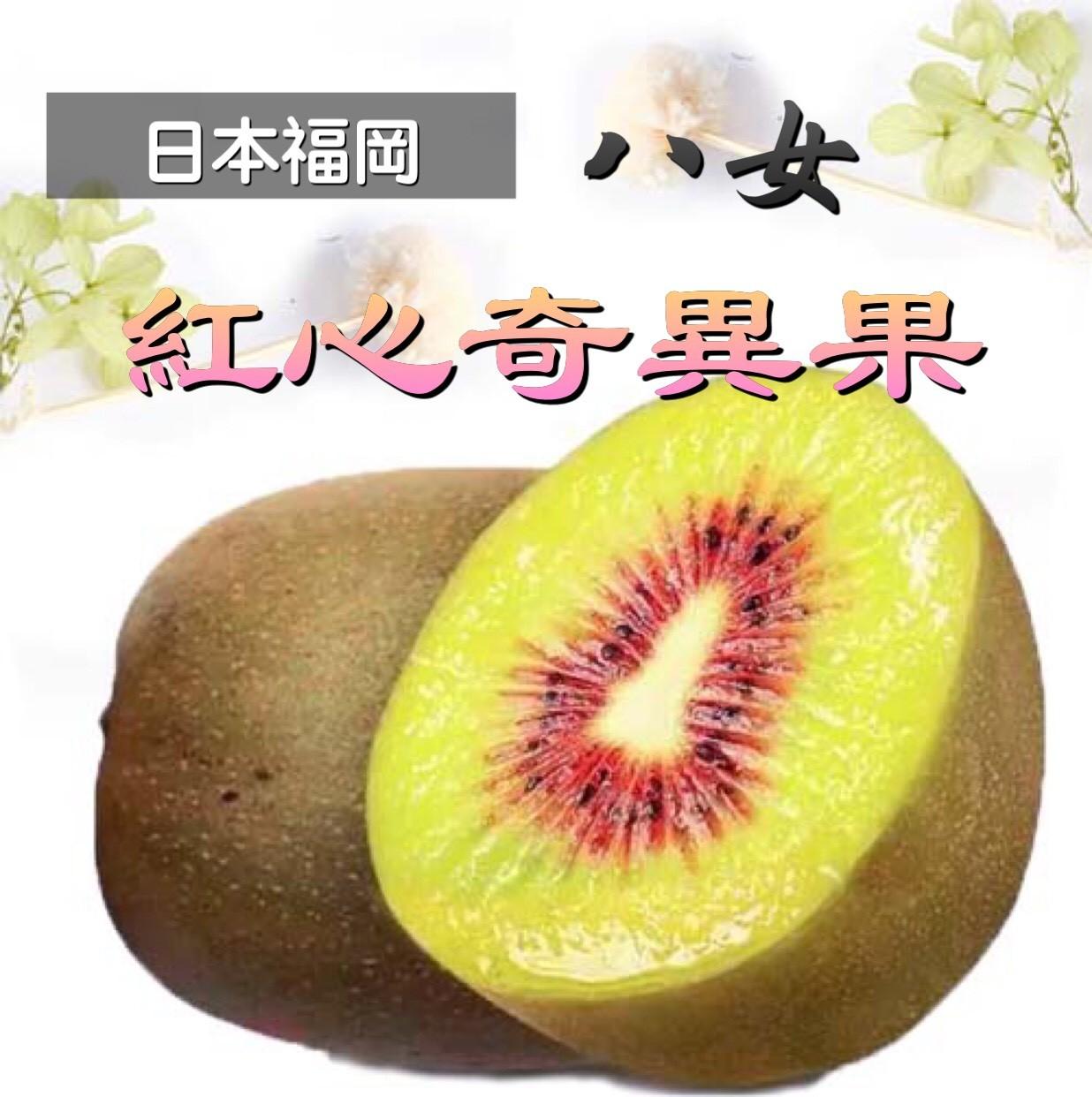 【立三】日本福岡八女 紅心奇異果(22~25顆/原裝箱)