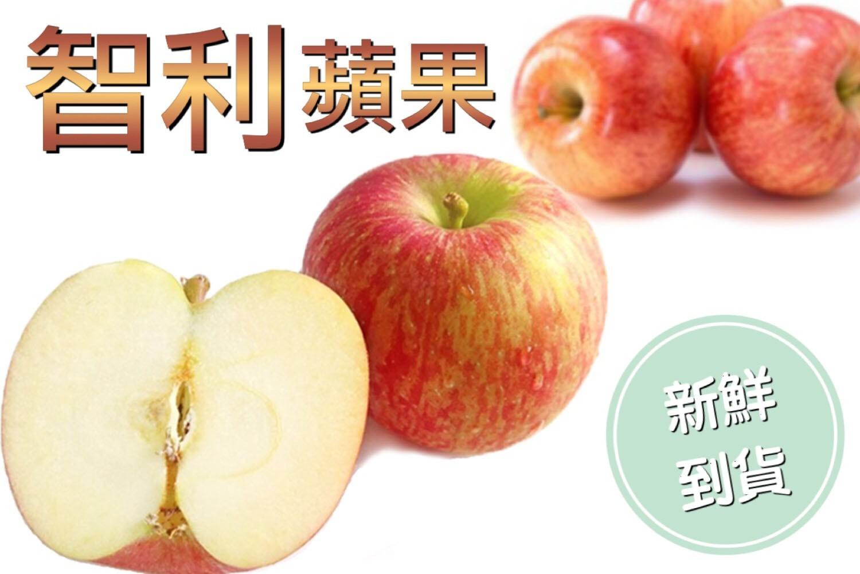 【立三】新鮮直送智利蘋果團購組(64顆入)