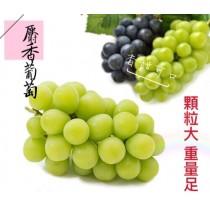 【立三】日本頂級麝香晴王葡萄(2串/盒)